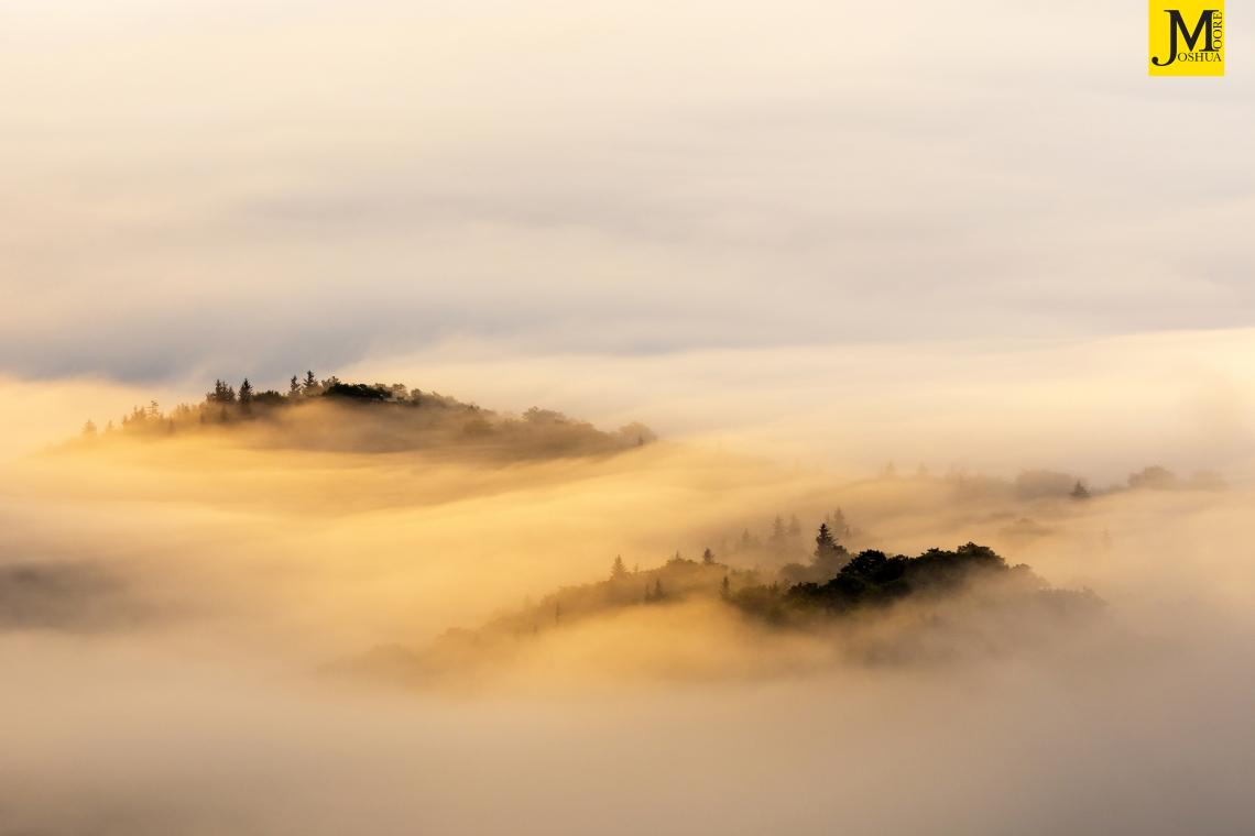 Misty Islands
