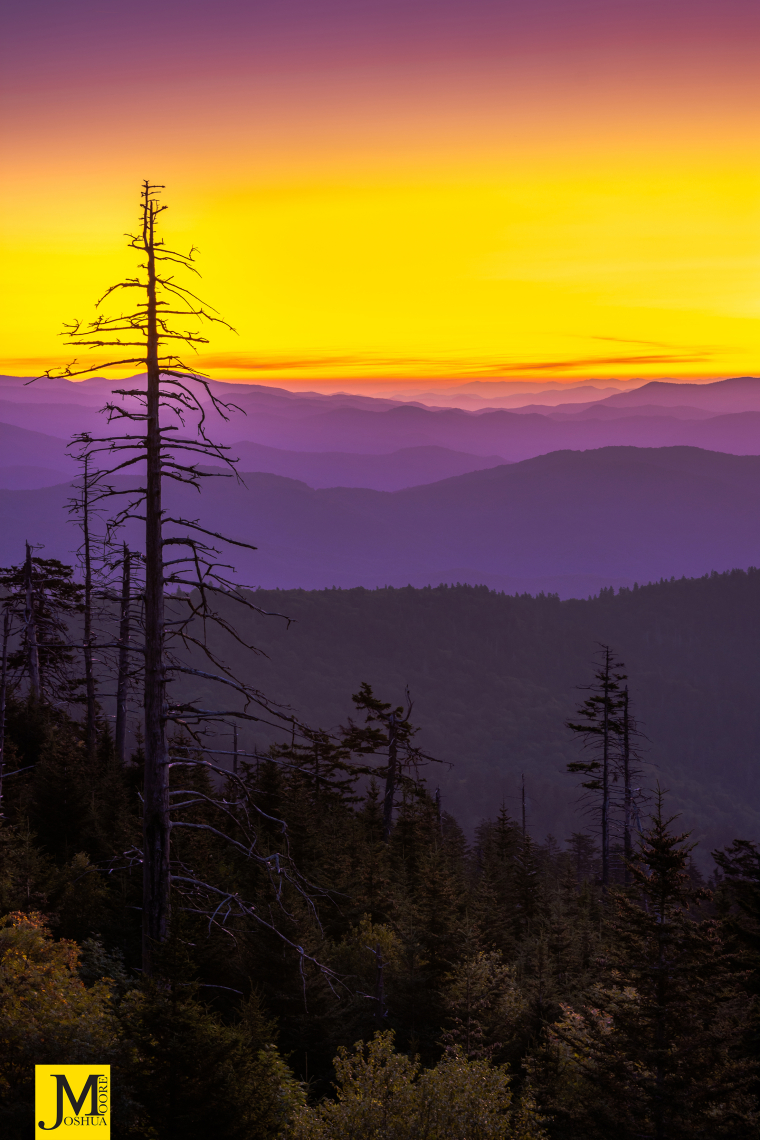 Good Morning from Clingman's Dome