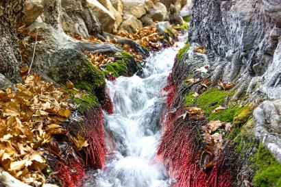 Estahban waterfall in golden a...