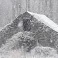 old-barn-in-snowstorm
