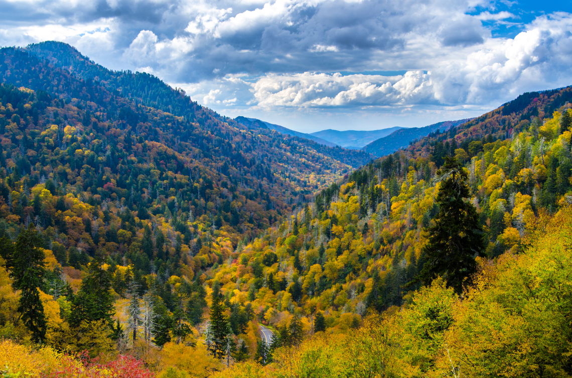 Autumn in the Smoky's