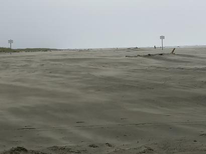 Dancing Sands
