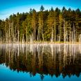 morning-reflection