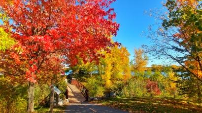 Fall Cornwall Canada