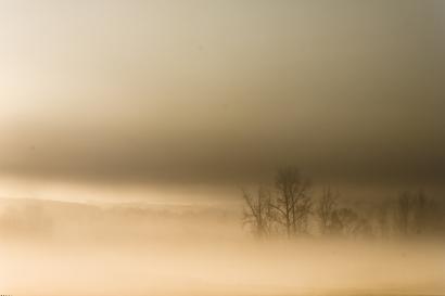 Heavy Fog...Early Morning