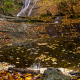 Autumn Along Elrod Falls