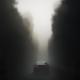 Fog Boulevard