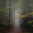 autumn-on-the-blue-ridge-parkway