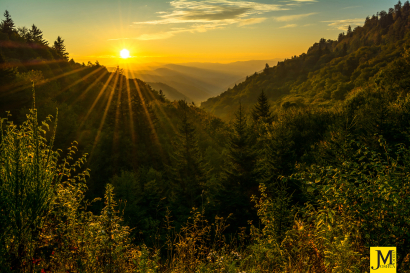 Sunrise from Newfound Gap