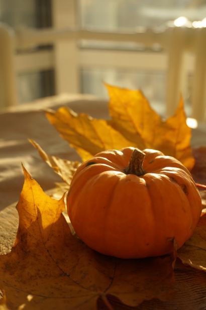 Pumpkin of my life