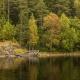 Autumn on the island of Valaam