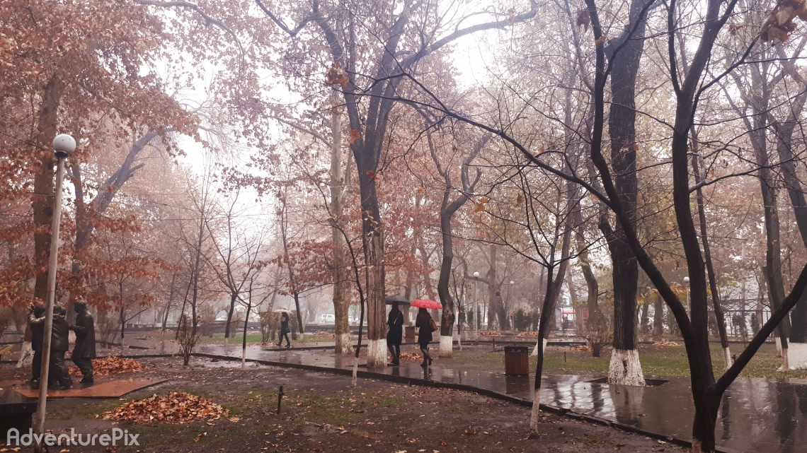 Rainy day in Autumn
