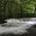 tumblin-creek