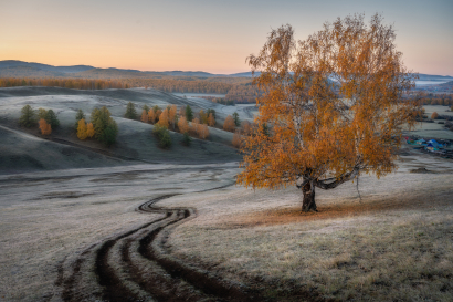 Frosty autumn morning