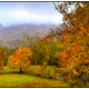 Misty View of Grandfather Mountain