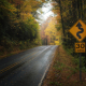Blue Ridge Parkway Autumn 2020