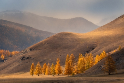 Gold of the mountains/ Золото...