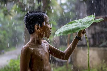 A children in the rain