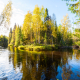 Autumn river in the taiga