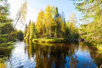 Autumn river in the taiga