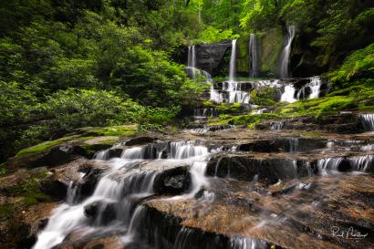 Virginia Hawkins Falls
