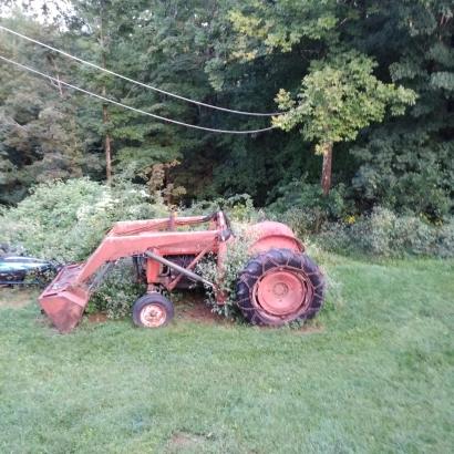 Tractor in vines