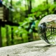 Lensball K9 Crystal Ball