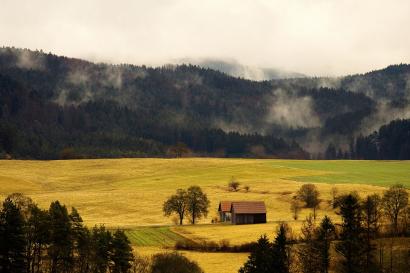 Distant farm.