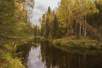 Mekhrenga river, Autumn.