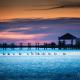 Outer Banks Ducks Sunset Sound Side