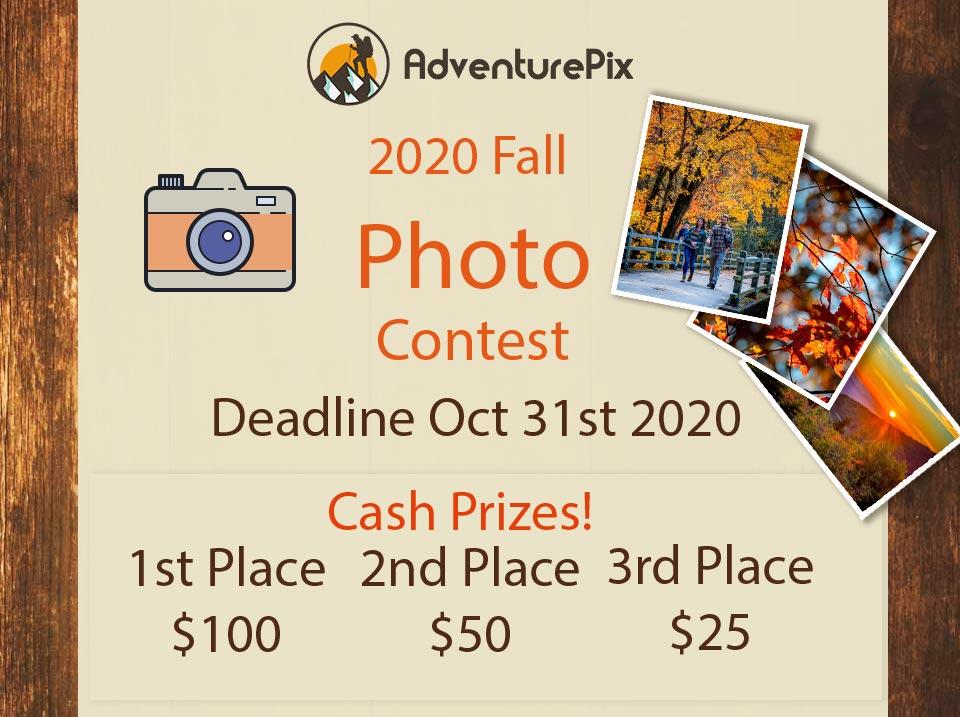 2020 Fall Photo Contest